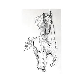 caballo - paard - horse - by Angeles Nieto - wire art sculpture